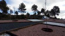 plantació al Calvet