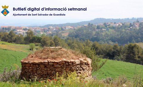 Butlletí digital